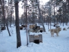 Finlande2007-083