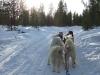 Finlande2007-118
