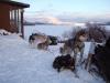 2009-Yukon-37