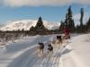 2009-Yukon-51