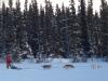 2009-Yukon-62