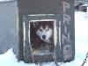 2009-Yukon-71