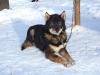 2009-Yukon-73