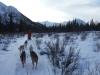 2009-Yukon-77