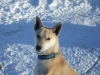 2009-Yukon-84
