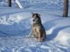 2009-Yukon-87
