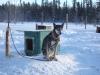 2009-Yukon-88