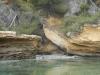 kayak-stchamas-istres08