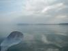 kayak-stchamas-istres15