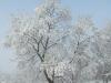 Aix sous la neige