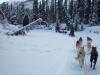 2009-Yukon-57