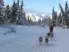 2009-Yukon-58