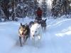 2009-Yukon-60